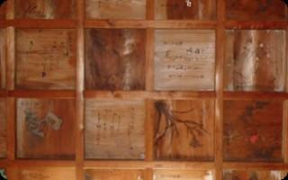 中津大神宮拝殿の天井絵