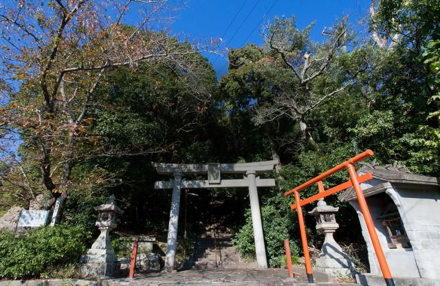 春日神社の店舗画像3