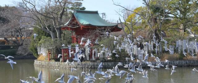 宗教法人 鶴岡八幡宮の店舗画像3