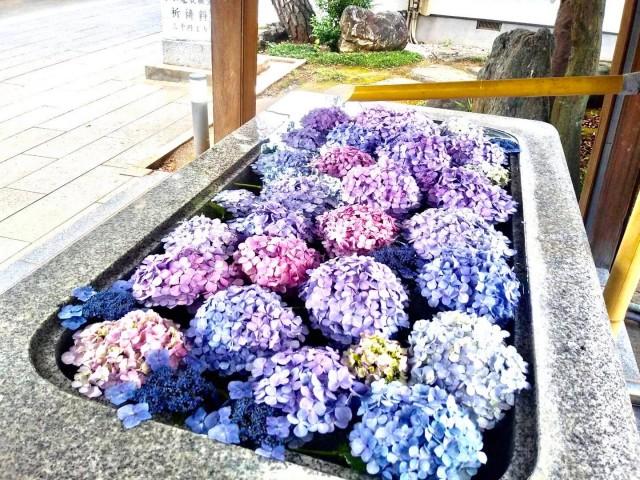 桜神宮の店舗画像2