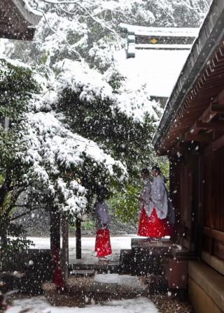 境内(冬景色)