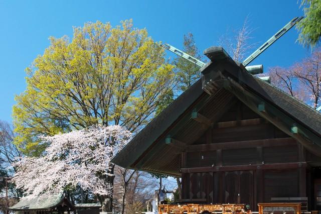所澤神明社の店舗画像2
