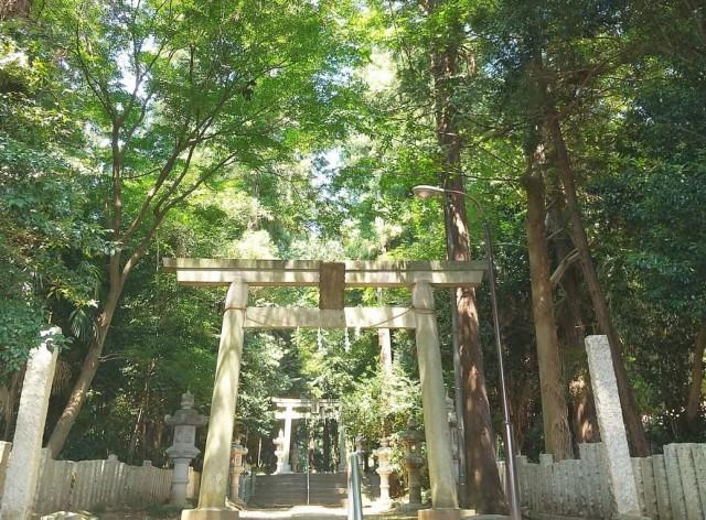 北野天神社の店舗画像3