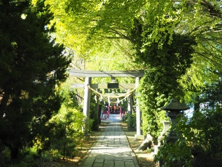 越谷香取神社の店舗画像1