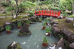 日本三大稲荷 祐徳稲荷神社の店舗画像3