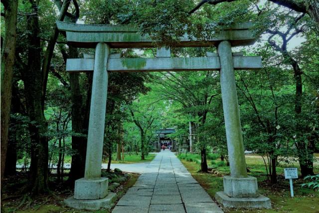 赤坂氷川神社の店舗画像1