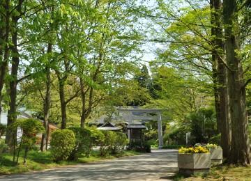 彌高神社の店舗画像1