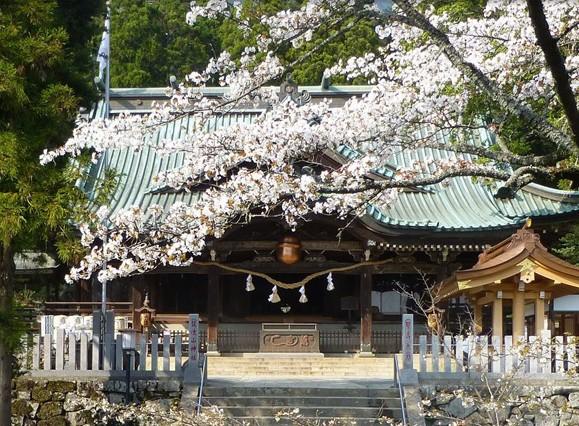 筑波山神社の店舗画像3
