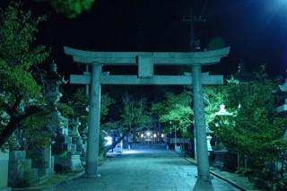 琴崎八幡宮 夜