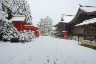 琴崎八幡宮 冬