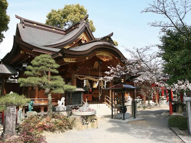 讃岐國一宮 田村神社の店舗画像3