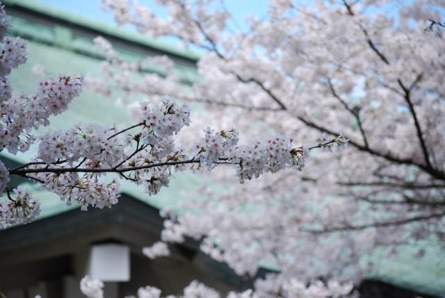 福井県護国神社の店舗画像1