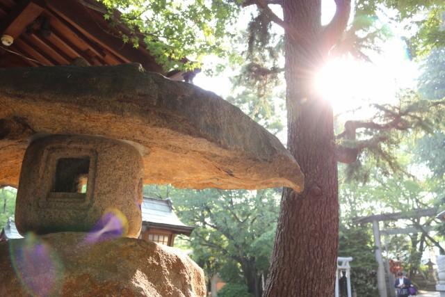 空鞘稲生神社の店舗画像2