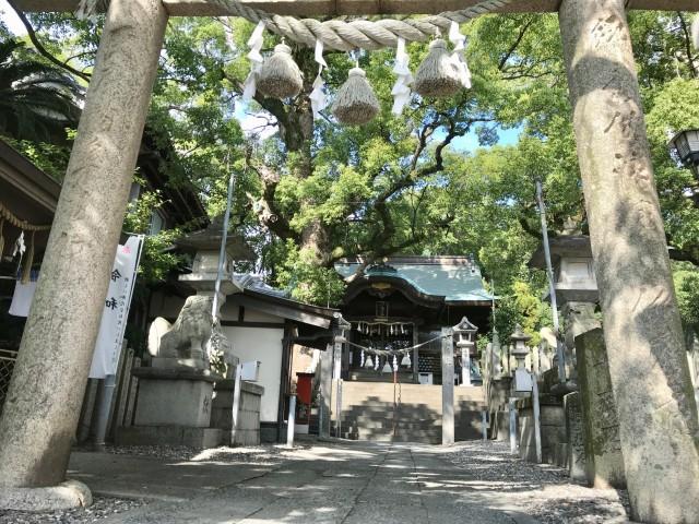 津田八幡神社の店舗画像2